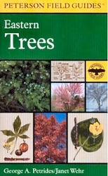 eastern-trees-book.jpg