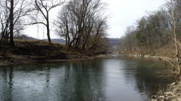 Fishing the Harpeth River In Middle Tennessee