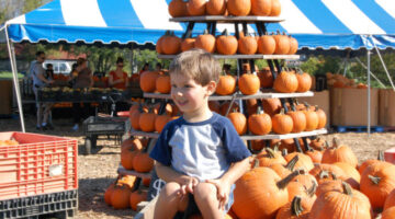 kids-pumpkins-at-gentrys-farm