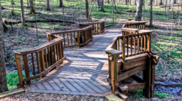 Fun Things To Do In And Around Brentwood, Tennessee