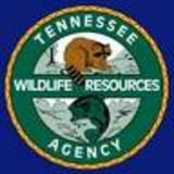 TWRA Winter Trout Stocking Schedule