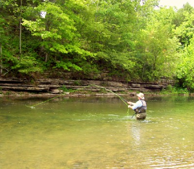 Fly fishing the elk at tims ford dam the brentwood tn guide for Fishing lakes in tennessee