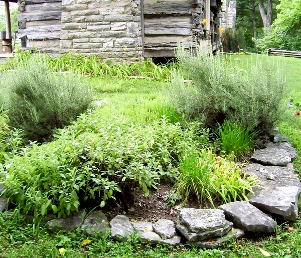 Backyard Herb Garden Ideas : Herb Garden Design Ideas Photograph  herbgardeningnashvil